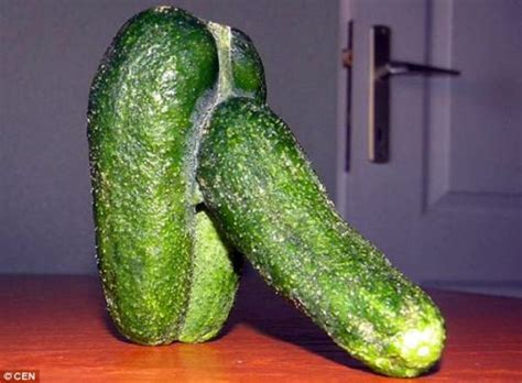 Penis cucumber saved from the chop | Metro News