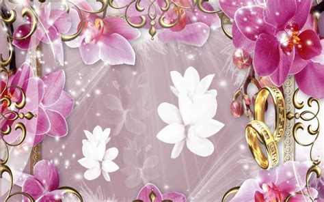 HD Orchids Of Love Wallpaper   Download Free - 76587