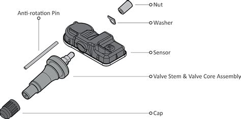 How Much Does It Cost To Replace A Tpms Sensor - dHIFA bLOG